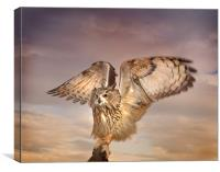 The Eagle Owl Has Landed, Canvas Print