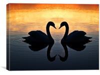 Swan Heart, Canvas Print