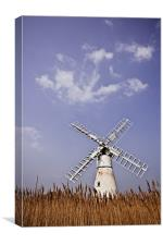 Thurne Windmill through the Reeds, Canvas Print