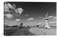 Spring at Thurne Mono, Canvas Print