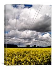 Rape seed field with Moody Sky and Pilon, Canvas Print