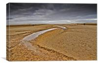 The vast sands of Holkham, Canvas Print