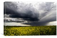 Storms over Rapeseed, Canvas Print