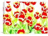 Flowers, Canvas Print