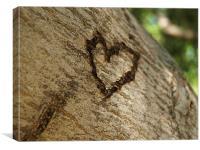 Love On tree, Canvas Print