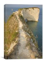 Old Harry Rocks, Canvas Print