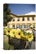 Sunflowers on bike, Canvas Print