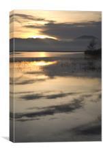 Cerknica lake at dawn, Notranjska, Slovenia, Canvas Print