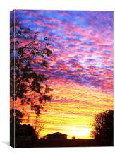 Sunset Barkly Downs, Canvas Print