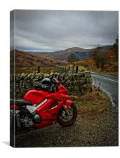A BIKERS VIEW, Canvas Print