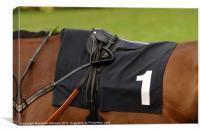 Horse parade saddle, Canvas Print