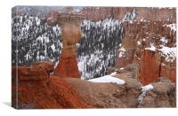 bryce canyon usa, Canvas Print