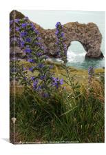 Durdle Door in Dorset, Canvas Print
