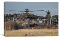 Two AH64 Apache helicopters