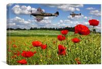 Spitfires and Poppy field, Canvas Print