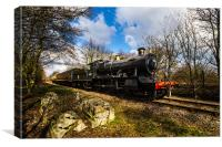 Steam Train nearing station, Canvas Print