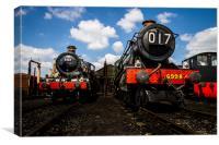 Steam trains , Canvas Print