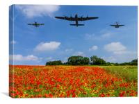 BBMF and poppy field, Canvas Print