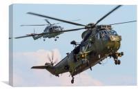 Royal Navy Sea King and Lynx, Canvas Print