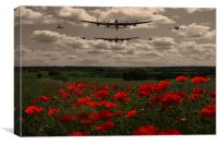 Warbirds in Sepia with poppies, Canvas Print