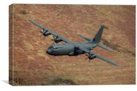 C130 Hercules, Canvas Print
