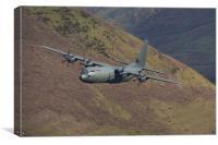 C130 Hercules low level, Canvas Print