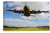 K series C130 Hercules Landing, Canvas Print