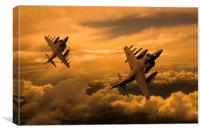 Harriers Sunset High , Canvas Print