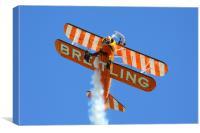 Breitling wing walker, Canvas Print