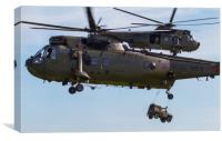 Royal Navy Sea King Helicopters, Canvas Print