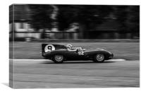 Jaguar D Type at Flywheel Festival, Canvas Print