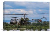 Westland Scout and Sioux Helicopters, Canvas Print