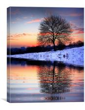 The Lone Tree, Canvas Print