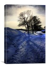 Snowy Trees, Berwick Upon Tweed, Canvas Print