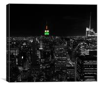 India in NYC !!!, Canvas Print