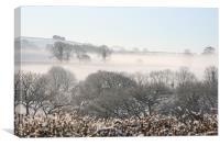 mist, Canvas Print