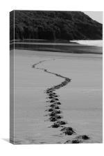 Footsteps, Canvas Print