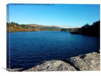 Tranquility at Burrator Reservoir