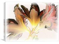 Feathered Amaryllis, Canvas Print