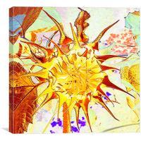 Sunflower art, Canvas Print