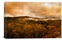 Autumnal colours and mists., Canvas Print