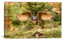 Woodland flight, Canvas Print