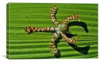 A Fallen Orchid (Sure), Canvas Print