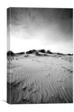 Solitude, Holkham, Norfolk, Canvas Print