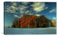 Autumnal Oasis