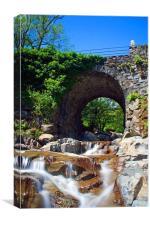 Coniston Stream, Canvas Print