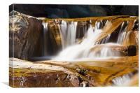 Rushing Falls, Canvas Print
