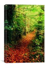 The Autumn Road, Canvas Print