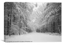 Snow covered trees, Thetford Forest, Norfolk, Canvas Print