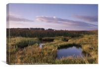 Marshes and Windmill. Cley-next-the-Sea, Norfolk, , Canvas Print
